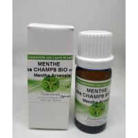 Huile Essentielle Menthe des Champs Bio (Mentha Arvensis) 10 ml