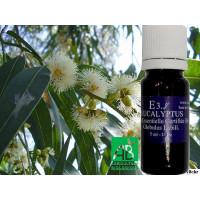 Huile Essentielle Eucalyptus Globulus Certifié Bio Ecocert- 5 ml